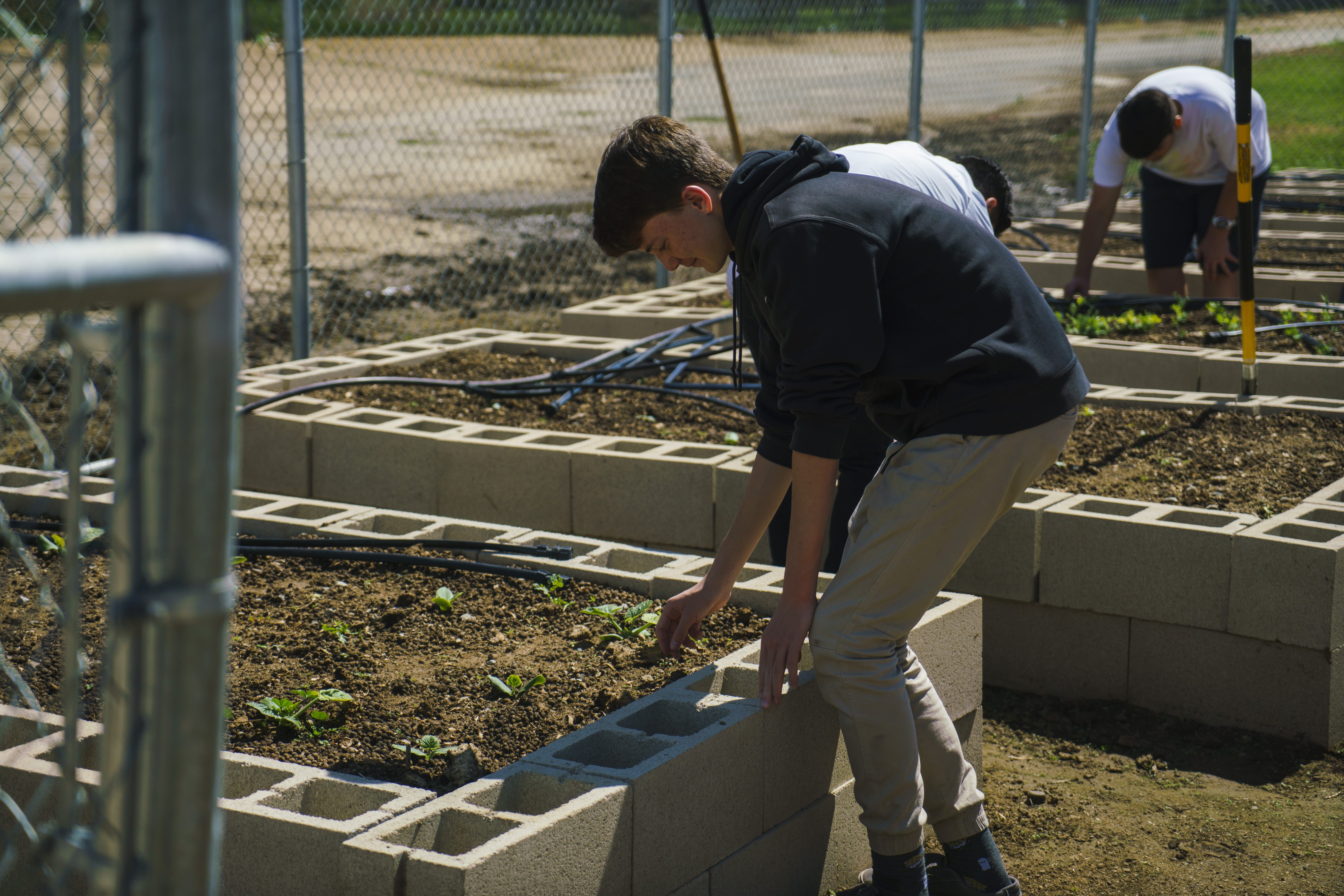 Norco Intermediate Garden Project – The CNUSD Connection